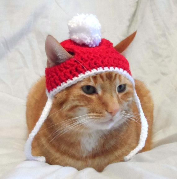 crochet chat chapeau noel.jpg