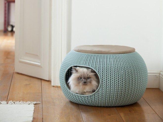 curver pour chat.jpg