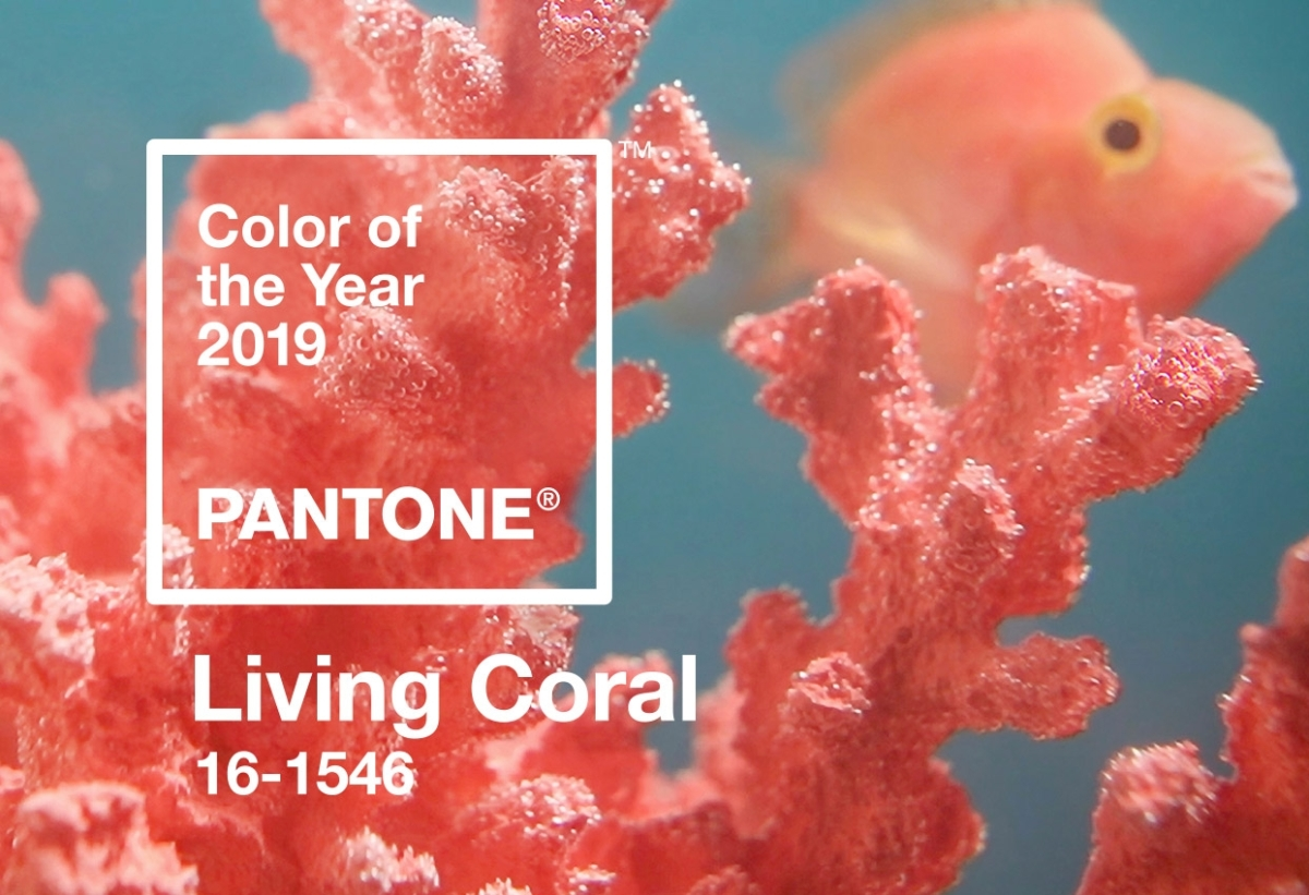 Pantone Living Coral : comment adopter la couleur de l'année 2019
