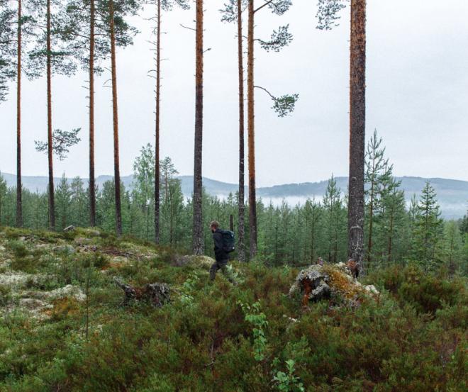 sandqvist-sac-a-dos-suede-nature-randonnee-.png